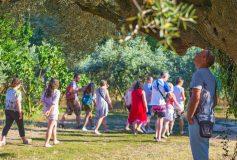 Camping Lou Pantaï, la villégiature idyllique pour les vacances d'été